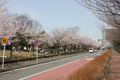 20100407-01.jpg