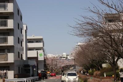 20120410-03.jpg