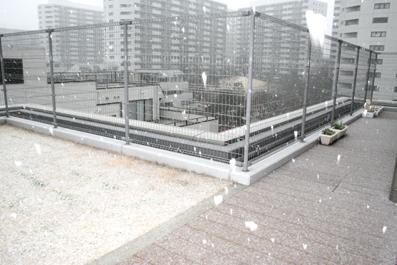 20090227-7.JPG