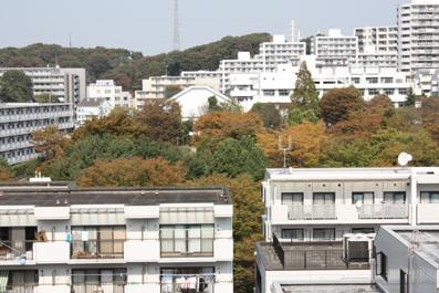 20091015-4.jpg