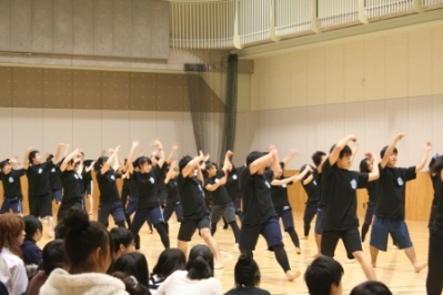 20101027-13.JPG