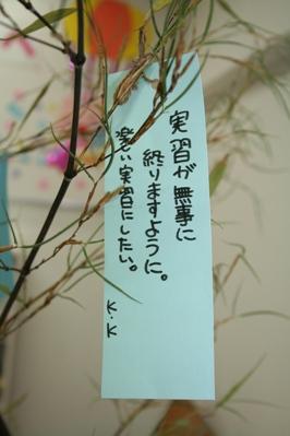 20130703-006.JPG