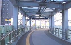 20081127-06.JPG