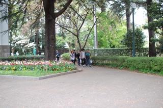 20080419-4.jpg